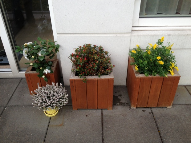 Updated planters!