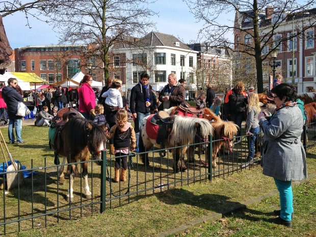 Even some pony rides for the kiddos.
