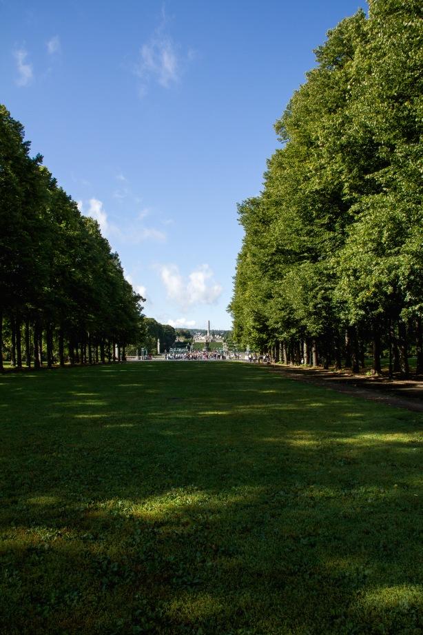 The whole park.