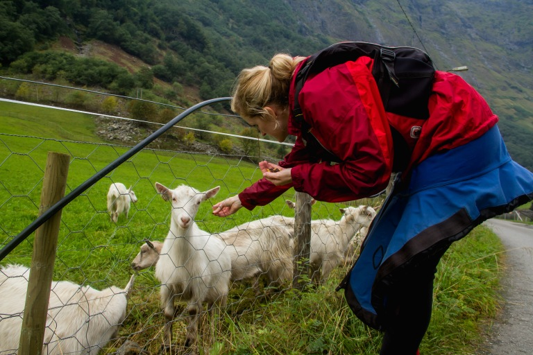 Of course, Erin had to feed the goats when we returned!